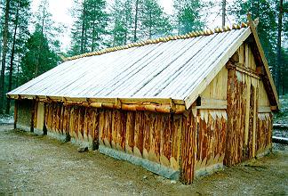 Vikingahus år 900