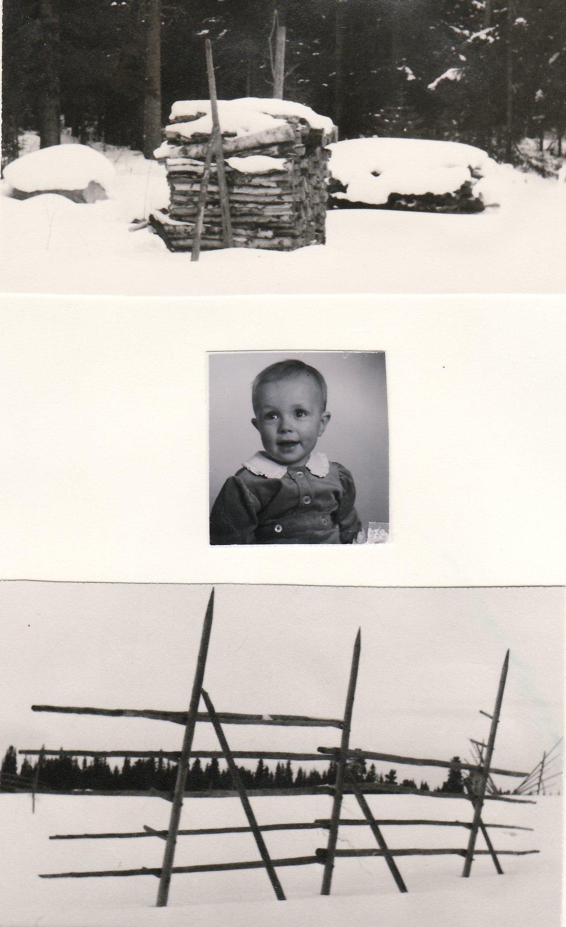 typisk kastvedskubik vid stubbarna, Jan år 1942, typisk höhässja - övervintrat hässjerö