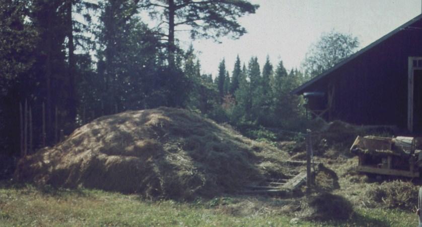 utetork o halmfläkttönmning 1969