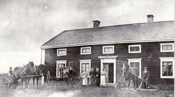 Höskörd år 1905 på Bringåsen 3