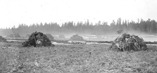 Okänd nyodling i Kyrkås 1905