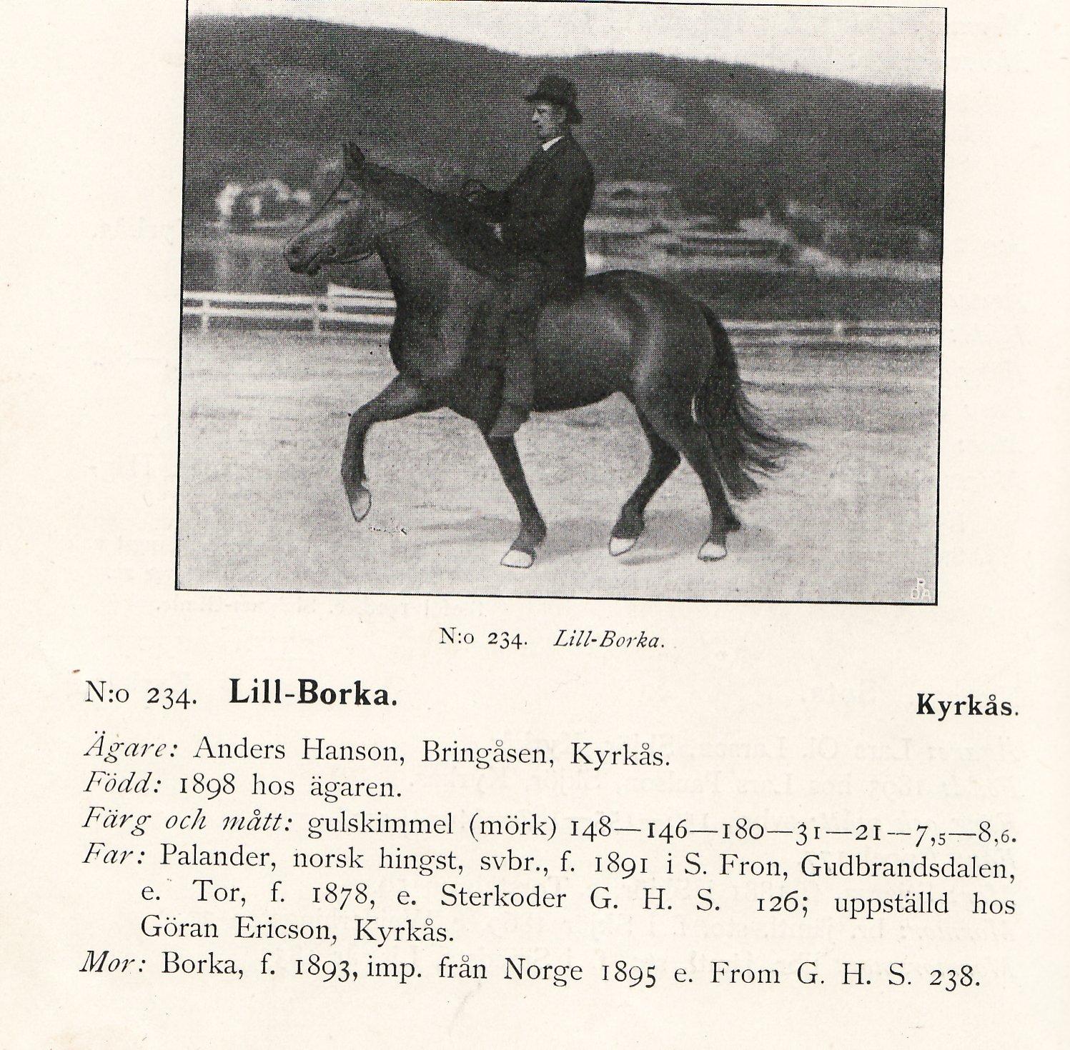 AJH på Lill-Borka